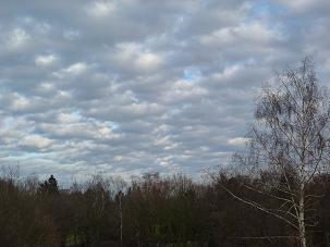 雲2011.1.16