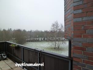 雪景色2011.2.24