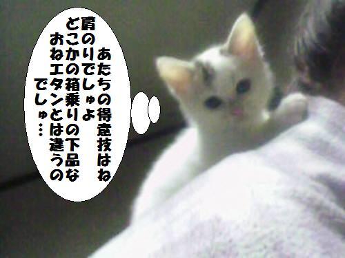 091109_2.jpg