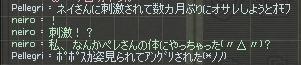 mabinogi_2009_11_02_005.jpg