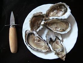 牡蠣の殻開けの道具と殻のあいた牡蠣