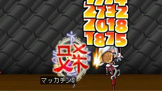 Maple6334a.jpg