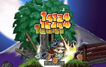 Maple6341a.jpg