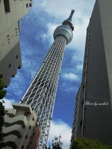 2011-07-07-14.jpg
