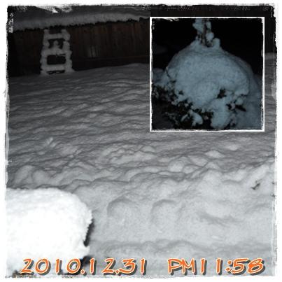 13_20110102213620.jpg