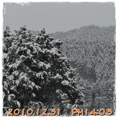 6_20110102213451.jpg