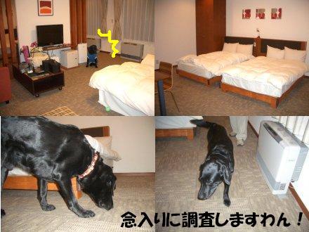 2007_1111_1.jpg