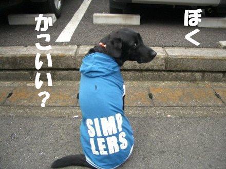 CIMG2282_2.jpg