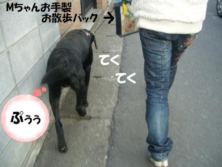 CIMG3141_4.jpg