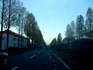 20071112_03.jpg