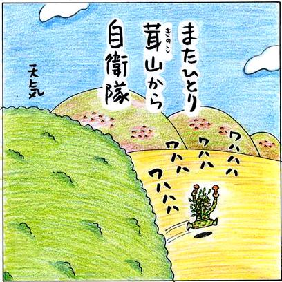 kinokoyama.jpg