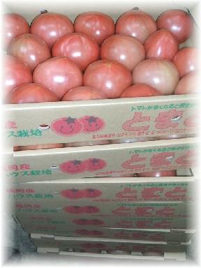 路地トマト