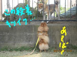 IMG_3193-2.jpg