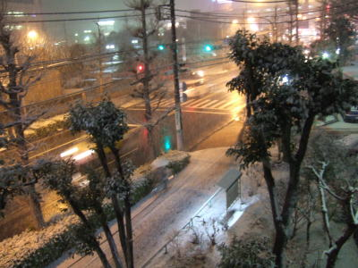 2011.2.14 雪 2
