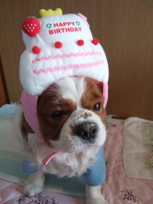 6才の誕生日