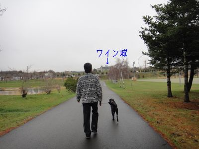 b2011 05 02_7153