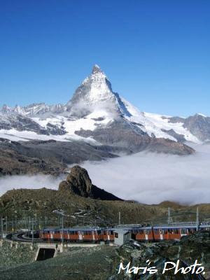 Swiss1.jpg