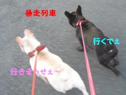 IMG_0896.jpg