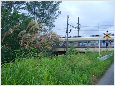 susuki-densya2009.jpg