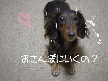 ji-_20071112112254.jpg