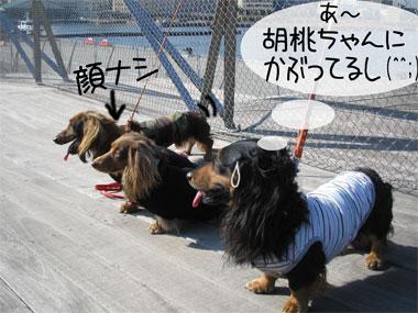 kaonashi.jpg