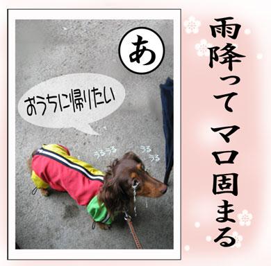 karuta-a.jpg