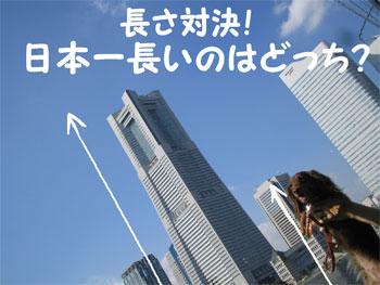 kuji3.jpg