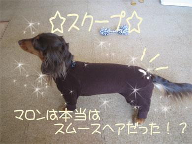 tsurumaro.jpg