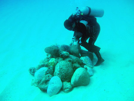 サイパンラウラウビーチ漁礁