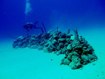 サイパンラウラウビーチ魚礁