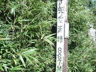 金時山ハイキング