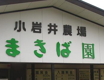 koiwai_200909_01.jpg