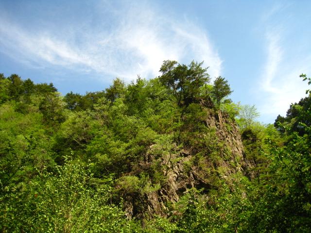 2011.5.15 本谷 (17)