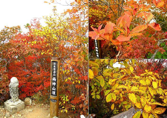 2011.10.9両神山 (38)