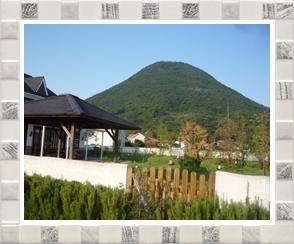 パパベルと飯野山