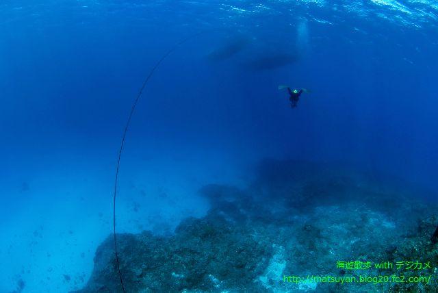 水納島の蒼い海とクルーズ船