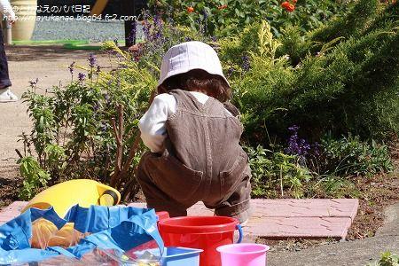 PICT0002_20091022224210.jpg