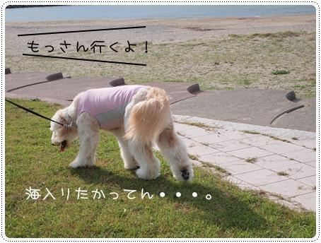 2011 09 13_0431