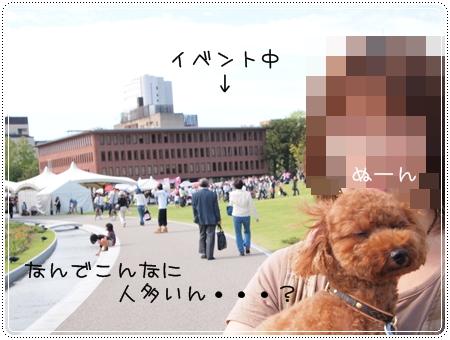 2011 09 23_0708