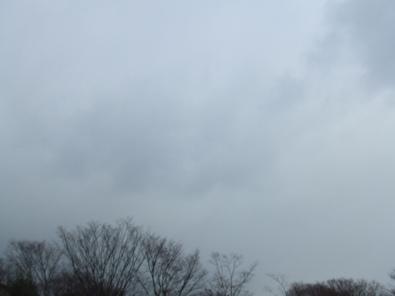 これぞ北陸地方の冬の空・・・。暗い。地味。イメージそのもの・・・。