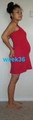 week36