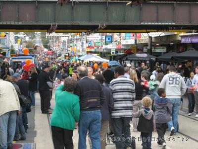 festival3apr2011.jpg