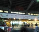 ELT日本武道館