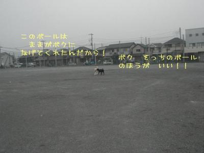 20070919201446.jpg