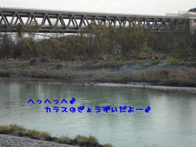 DSC063761111.jpg