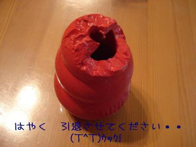 DSC08668.jpg