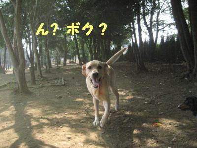 IMG_0924.jpg