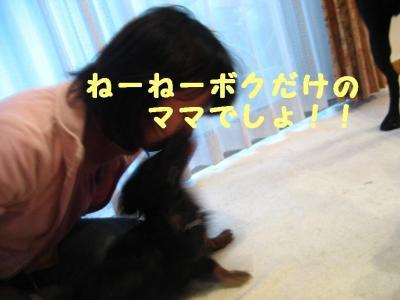IMG_1213.jpg