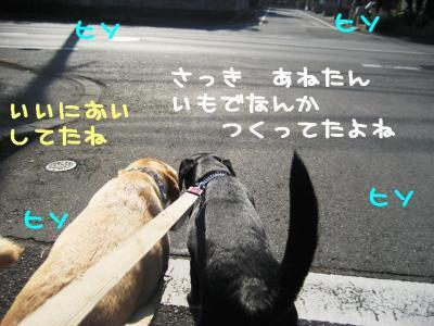 IMG_1302.jpg