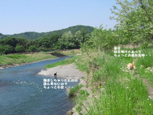 IMG_328920110519.jpg
